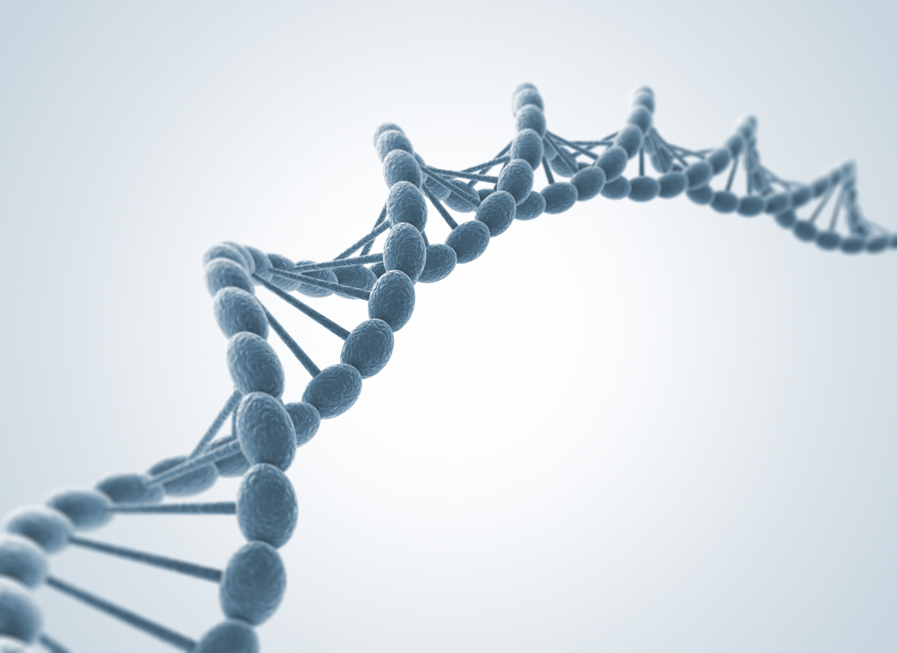 Researchers Identify New Gene Mutations Related to Alport Syndrome