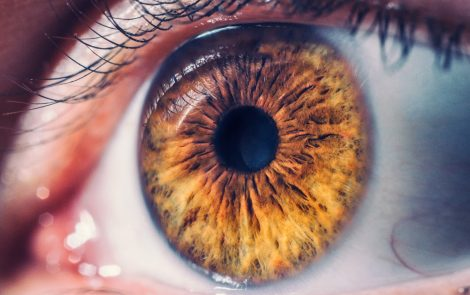 Thickness of Eye's Retina May Aid in Diagnosing Men with More Advanced X-linked Alport Syndrome, Study Says